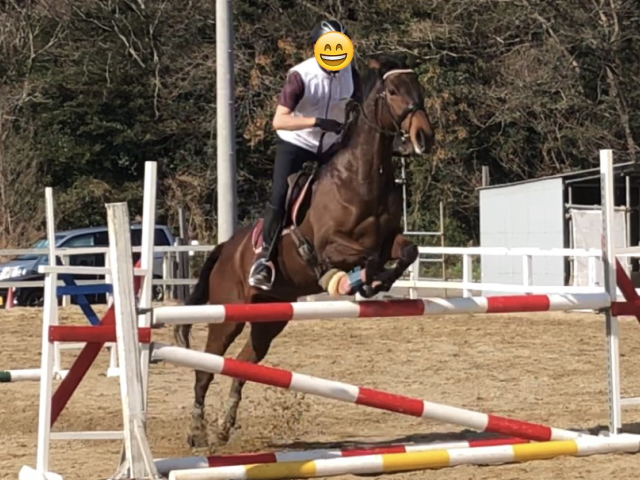 エルシー乗馬クラブ